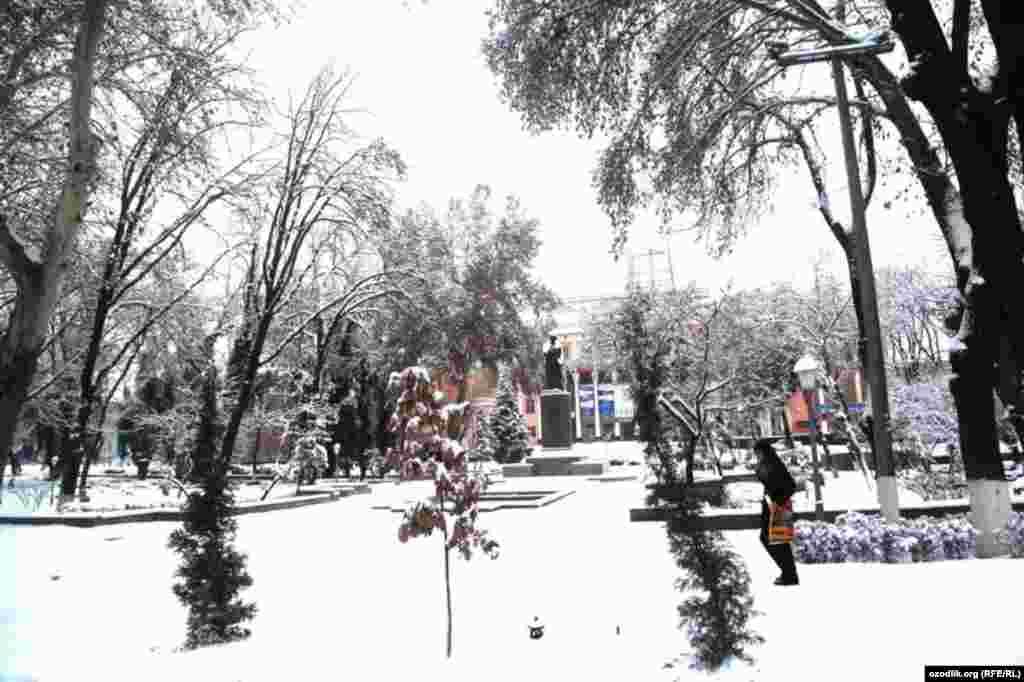 Ташкентта 30 сантиметр калынлыкта кар яуды.