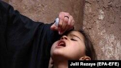 آرشیف، تطبیق کمپاین واکسین پولیو در ولایت هرات.