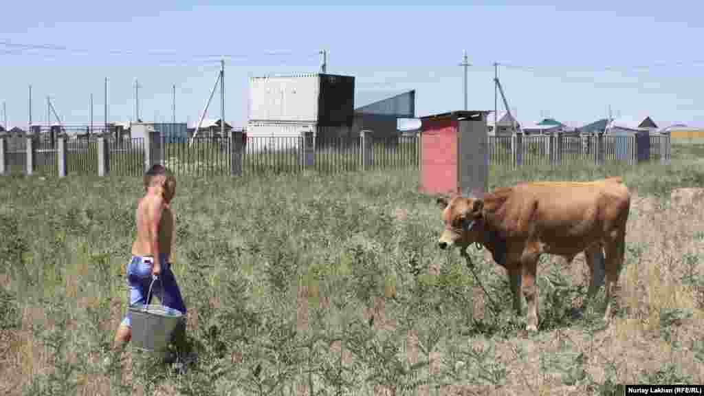 Дом бабушки расположен примерно в пяти километрах от дома Нурсултана. Его бабушка живет недалеко от школы в Жалгамысе. Она недавно переехала в село из Талдыкоргана. У бабушки Нурсултана – небольшое хозяйство, во дворе есть куры и коровы. Нурсултан взялся ухаживать за теленком – теперь он каждый день приносит ему воды.