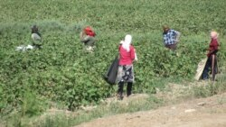 Türkmenistan: Pagtany doly ýygnamak iň möhüm mesele