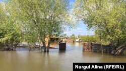 Су басқан Заречный ауылы. 16 мамыр 2017 жыл