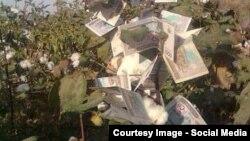 Фойдасини давлат оладиган пахта таннархидаги харажат аҳоли зиммасига юкланмоқда.