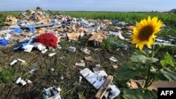 Уламки «Боїнга», збитого в небі над Донбасом, липень 2014 року