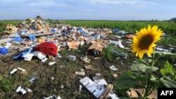 Уламки «Боїнга» на місці падіння літака, липень 2014 року