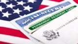 U.S. - United States of America social security and green card with US flag on the background. Immigration concept. Closeup with shallow depth of field, photo ©Shutterstock, undated