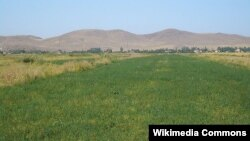 Irrigated fields in Zhambyl Province's Chui River Valley