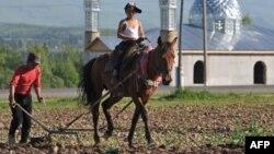 Два кыргыза возделывают землю. Поселок Караой в Ферганской долине. Кыргызстан, 12 мая 2009 года.