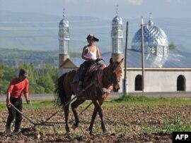 Жер жыртып жүрген қырғыз дихандары. Қарой ауылы, Ферғана жазығы, Қырғызстан. 12 мамыр 2009 жыл.