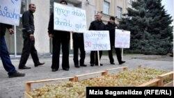 Кахетинские участники акции приехали в столицу не с пустыми руками