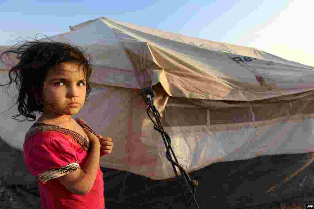 ساکنان تلعفر که سه سال پیش موفق به فرار از آن شدند، در اردوگاههایی اسکان داده شدند.