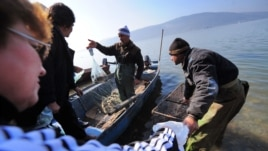 Romanian fishermen sell their catch from the Danube River in Bazias. (file photo)
