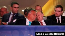 Vladimir Putin (i dyti nga e djathta) dhe Viktor Orban duke e ndjekur garën në xhudo në Budapest