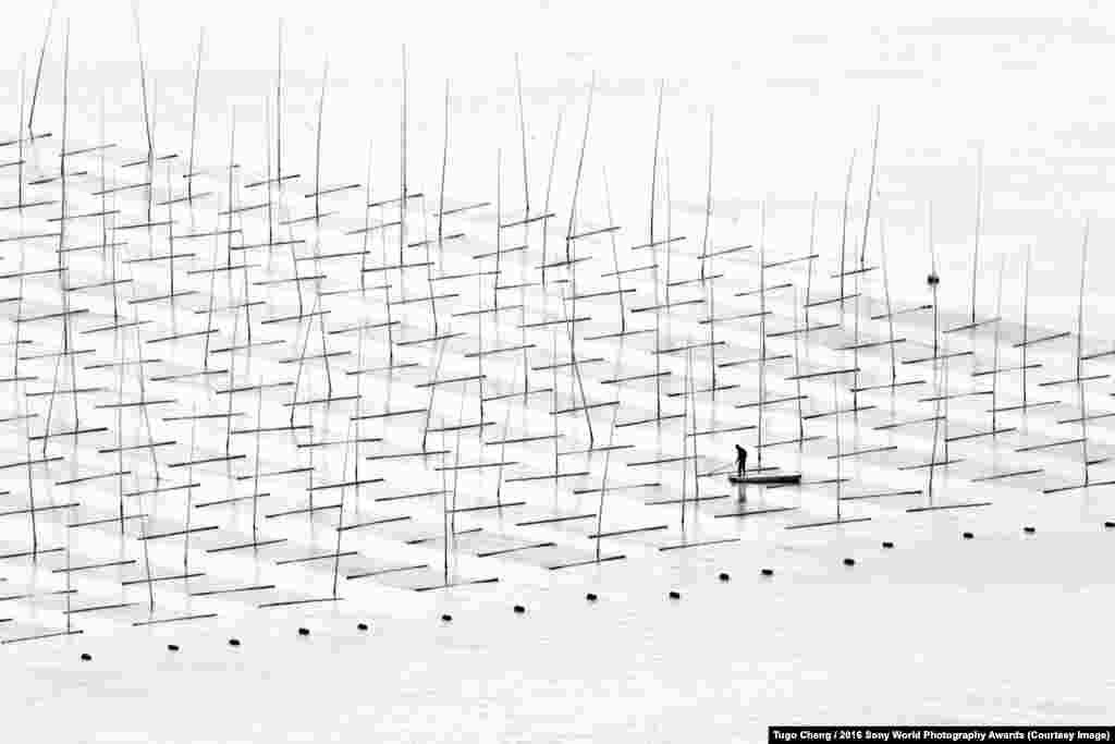 Photographer Tugo Cheng of Hong Kong: Farming At Sea Off the coast of southern China, a man fishes in an area constructed for aquaculture.