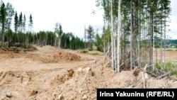 Рядом с кладбищем в Партизанске идет добыча золота