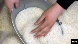 در هفته های گذشته اخبار ضد و نقيضى در باره آلودگى برنج وارداتى از هند در رسانههاى ايرانى منتشر شده است،