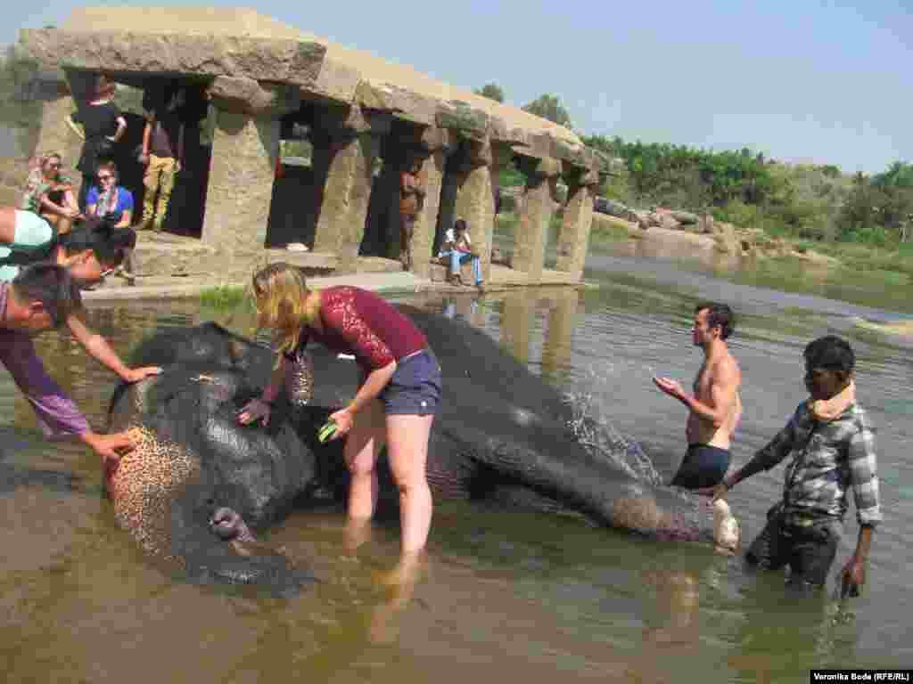 Купание слона в местной реке.
