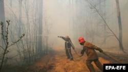 Гасіння пожеж у Чорнобильській зоні триває близько двох тижнів