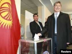 Until recently the prime minister, presidential candidate Almazbek Atambaev casts his ballot during the presidential election at a polling station in Bishkek on October 30.