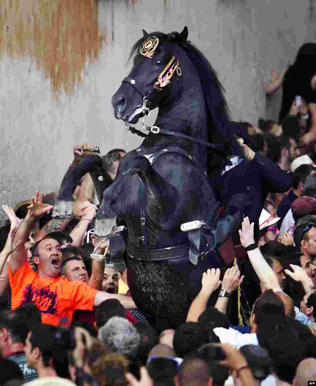 A horse rears in a crowd during a parade at the traditional San Juan festival in the town of Ciutadella on the Balearic Island of Menorca. (AFP/Jaime Reina)