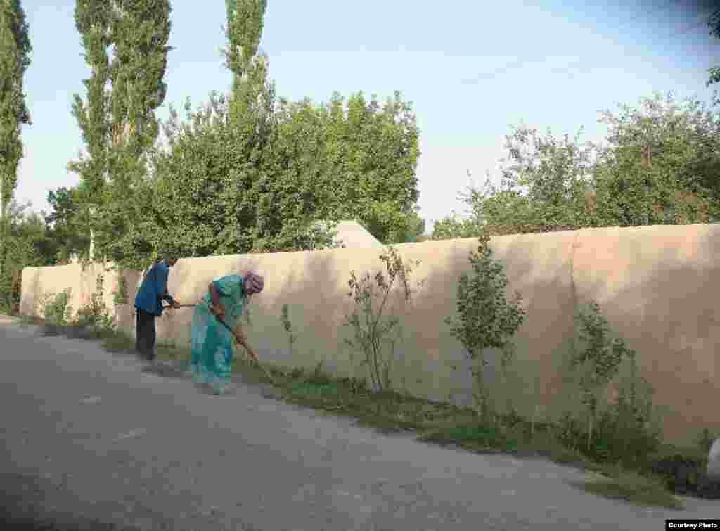 Жители сел в основном зарабатывают на жизнсь садоводством