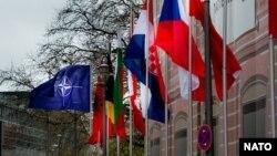 Drapelele statelor NATO
