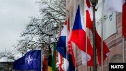 Флаги НАТО и стран, входящих в союз