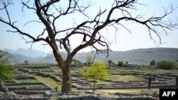 Pamje nga një hapësirë në provincën Punxhab në Pakistan