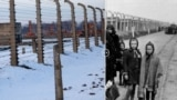 Poland -- Auschwitz Then And Now screanshot