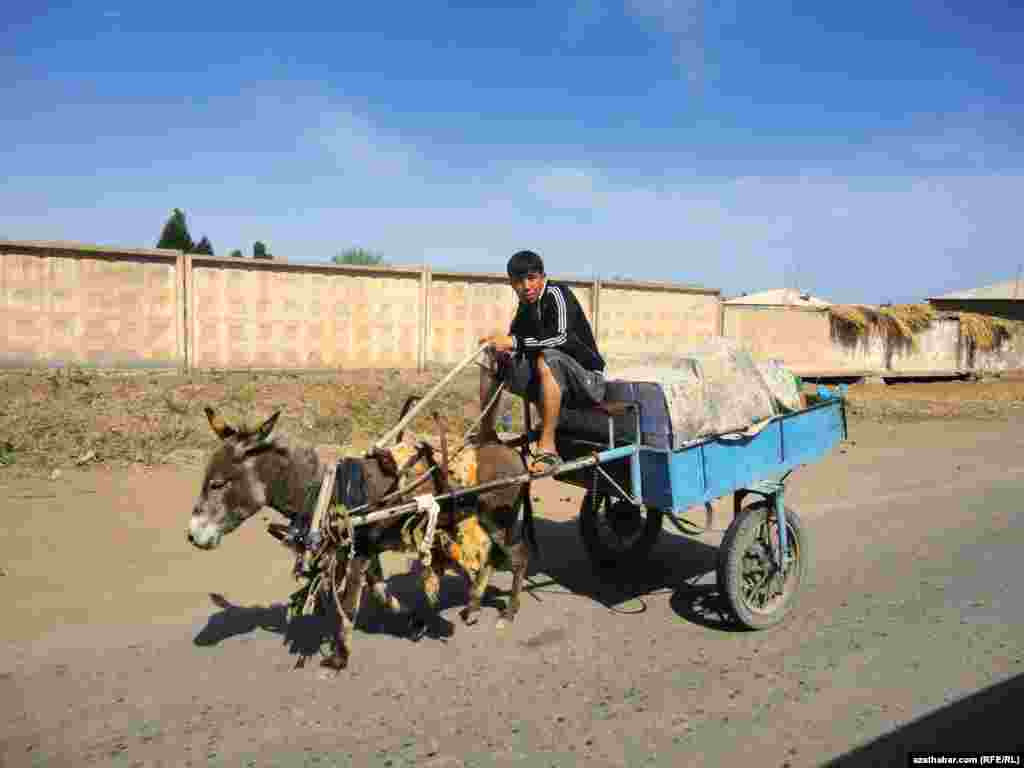 Hauling goods in Turkmenistan