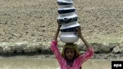 A Pakistani girl carries pots filled with drinking water as she heads to her home in the Pakistani province of Sindh in July.
