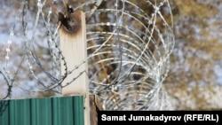 Колония в Кыргызстане. Иллюстративное фото.