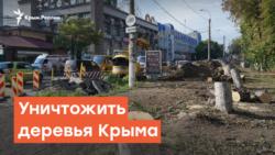 Уничтожить деревья Крыма | Радио Крым.Реалии