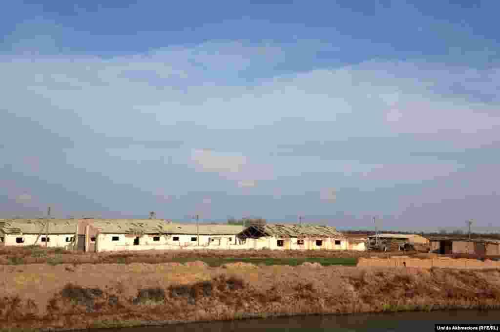 Заброшенная ферма, на которой работали местные жители.