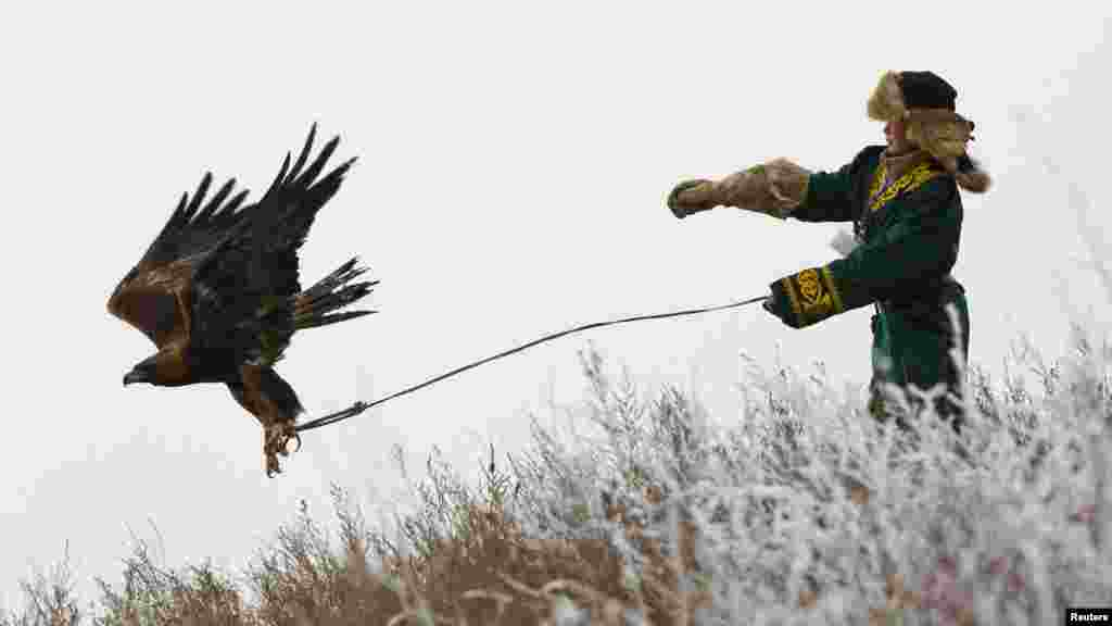 A hunter releases his tame golden eagle during an annual hunting competition outside Almaty in Kazakhstan on December 9. (Photo for Reuters by Shamil Zhumatov)