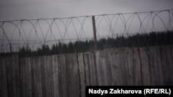 """Кадр из фильма Нади Захаровой """"Между лесом и тюрьмой"""""""