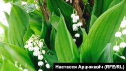 Фота Настасьсі Арцюкевіч.