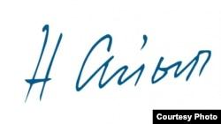 Логотип сайта narynaiyp.com