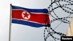 Flamuri verikorean.