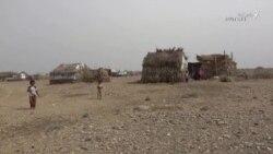 قحطی و گرسنگی در یمن همزمان با هجوم کرونا