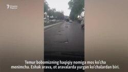 Самарқанднинг Амир Темур номига мос кўчаси