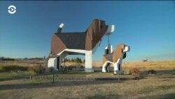 """Отдохни в """"Собаке"""": один из самых необычных мотелей в США"""