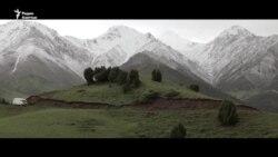 Скучающий по горам Кыргызстана турецкий режиссер