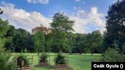 A Stromovka park egy része