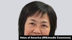 Келу Чао, Американската агенција за глобални медиуми