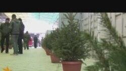 Бишкекте балаты базары ачылды