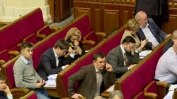 Олена Сотник про голосування за «безвізовий пакет»