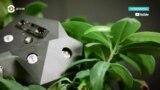 Детали: флора и роботы