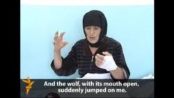 Grandmother Vs. Big Bad Wolf