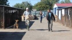 Черкаський комунальний притулок вуличних тварин