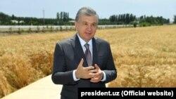 Өзбекстандын президенти Шавкат Мирзиёев дыйкандар менен жолугушууда.